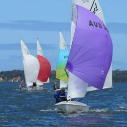 Downwind run in the Ossie McCutcheon race