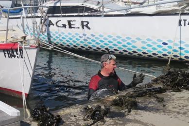 Navy seal Uri operates on marina bottom removing mussels and spare tyres